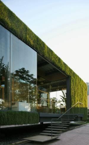 muro verde 10