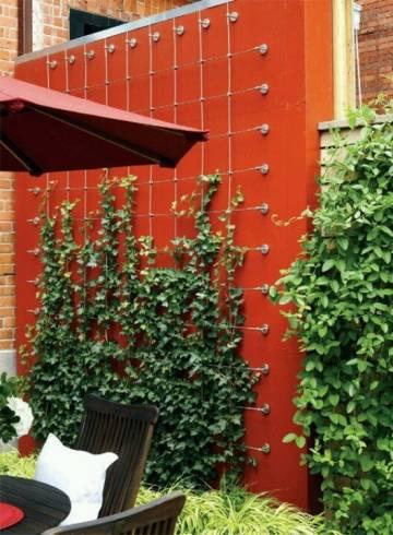 muro verde 15