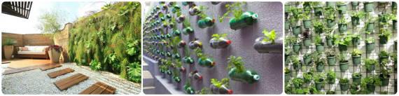 muro verde 3