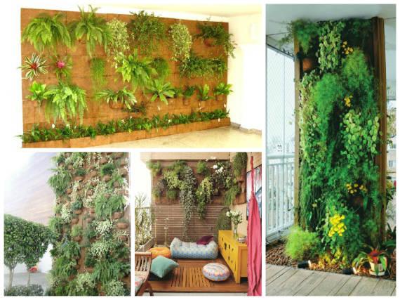 muro verde 6