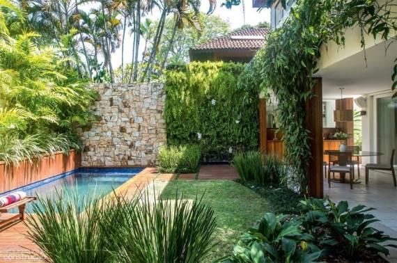 Muro verde como fazer dicas e fotos for Plantas para piscinas