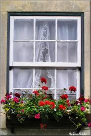 janela guilhotina decorada com flores