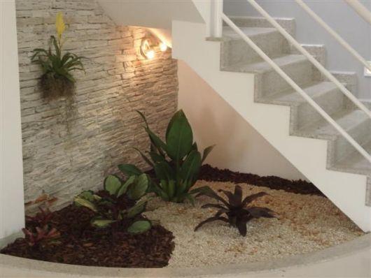 plantas embaixo da escada