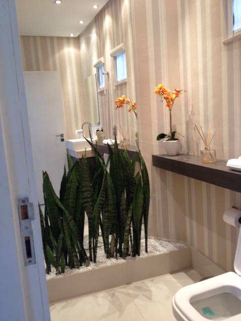decoração planta banheiro