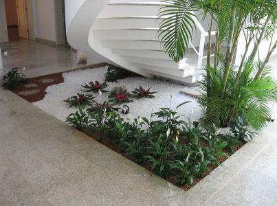 decoração interna com plantas