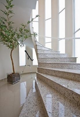 planta bambu na decoração