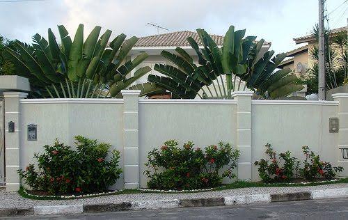 muro verde simples