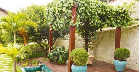 planta pendurada para suporte