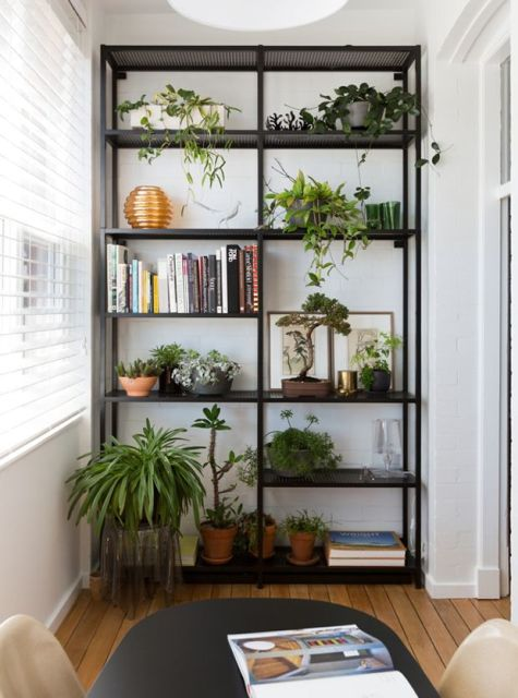 80 modelos de estantes como fazer fotos dicas for Estantes para plantas exteriores