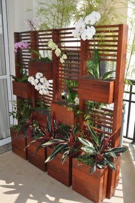 estante madeira plantas