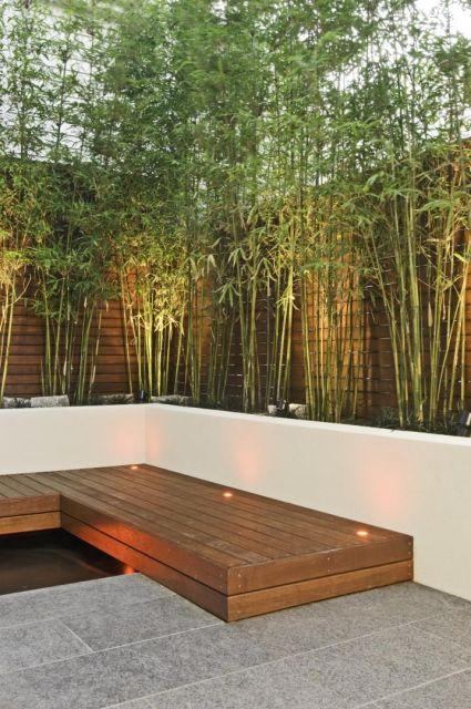 decoracao jardim bambu:muro de madeira cria um fundo para as plantas decorativas