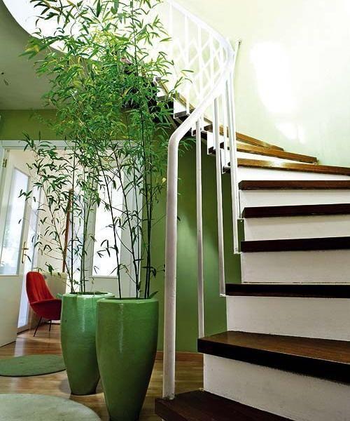 decoracao jardim bambu:No jardim, deck de madeira com mesa e cadeira