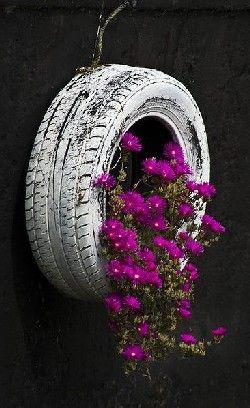 flor roxa