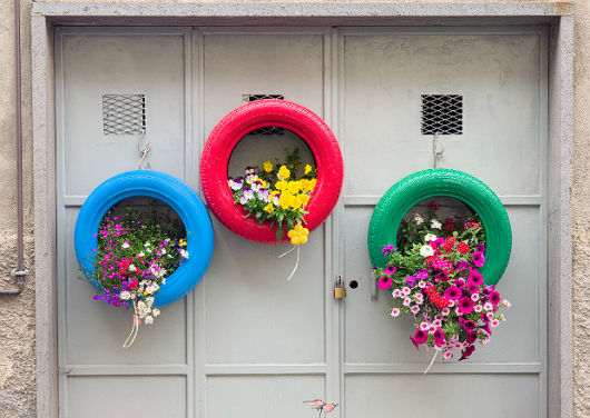 flores coloridas jardim:flores coloridas