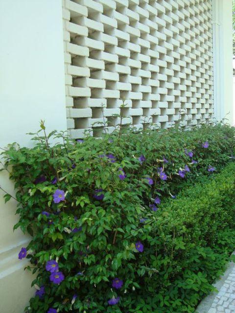 muro de tijolo a vista