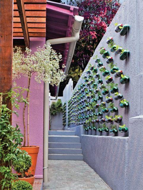 jardim suspenso com garrafas pet