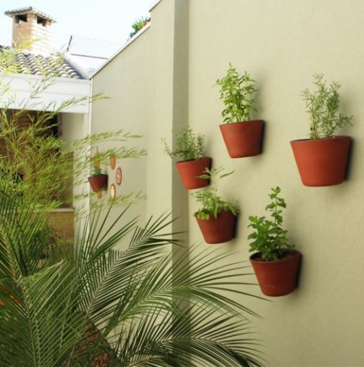 muro com vasos de temperos