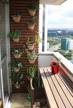 jardim vertical temperos : JARDIM VERTICAL: tudo sobre!