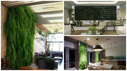 paredes com plantas