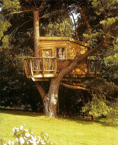 construção com madeira