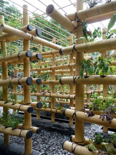 armação bambu