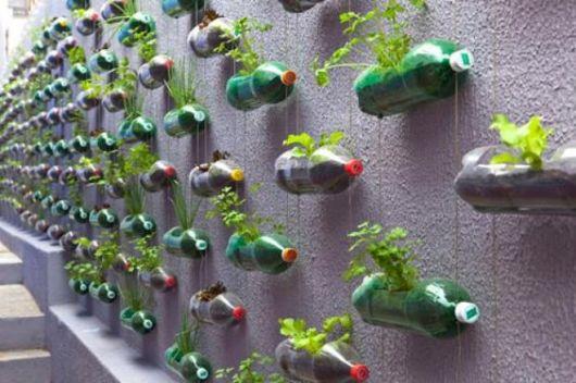 5 ideias baratas para fazer uma horta vertical