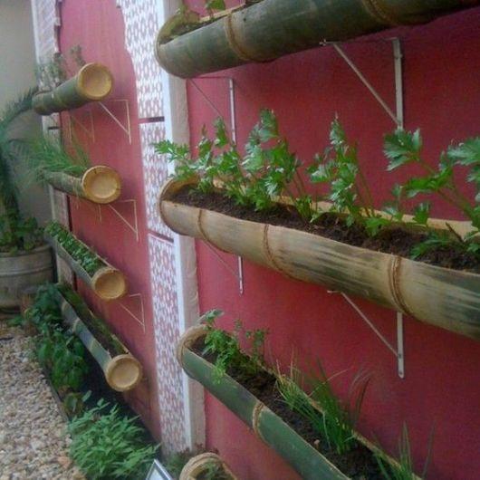 muro com horta