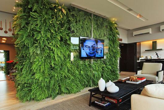 parede de sambaia