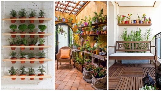 modelos para plantas