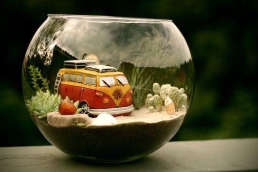 mini jardim de vidro : mini jardim de vidro:Terrário: modelos, plantas e como fazer!