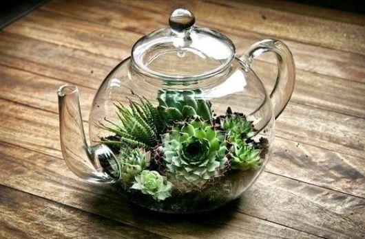 mini jardim terrario : mini jardim terrario:Terrário: modelos, plantas e como fazer!