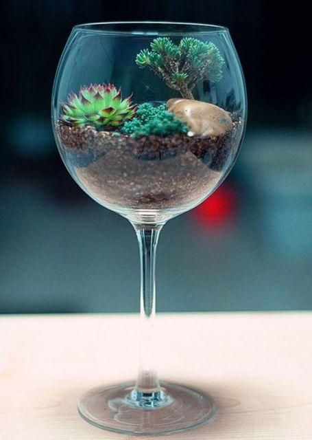 mini jardim terrario : mini jardim terrario:As camadas de terra ficam visíveis no vidro