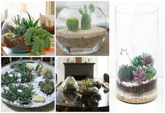 56 Modelos De Terrario Com Plantas E Como Fazer - Terrario-para-plantas