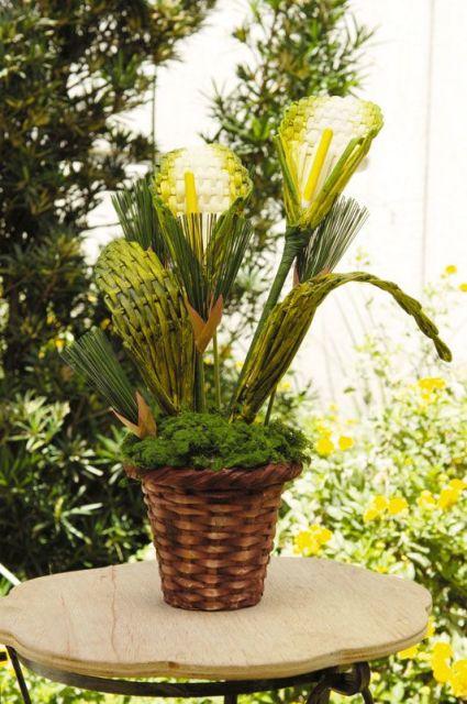 plantas feitas de jornal