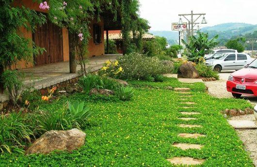 jardim decorado pedras