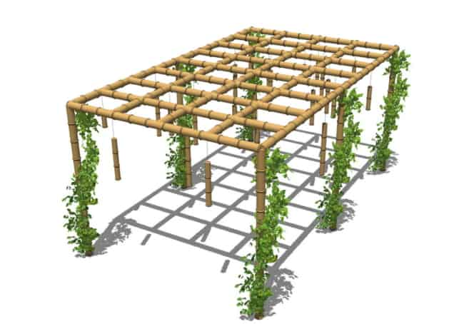 Projeto de pergolado de bambu