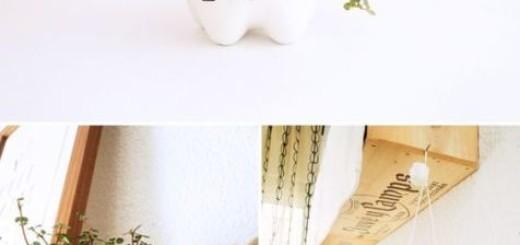 vasinho decorativos