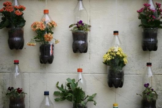 jardim no muro