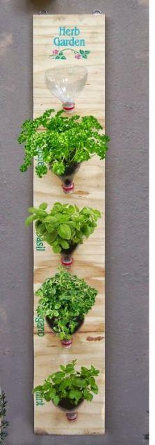 jardim vertical com horta