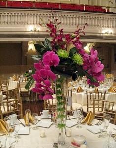 decoração com orquídea em salão de festa
