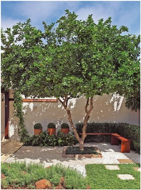 fotos de jardins na sombra ? Doitri.com