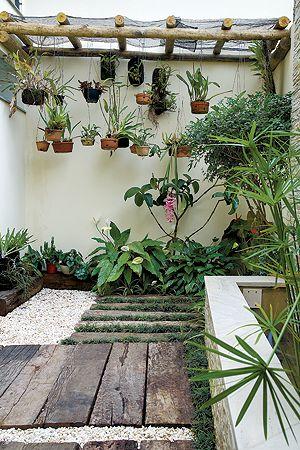 jardim com orquídeas