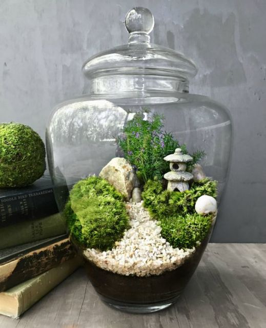 plantas jardim japones:Jardim japonês: ideias de como fazer um espaço zen!