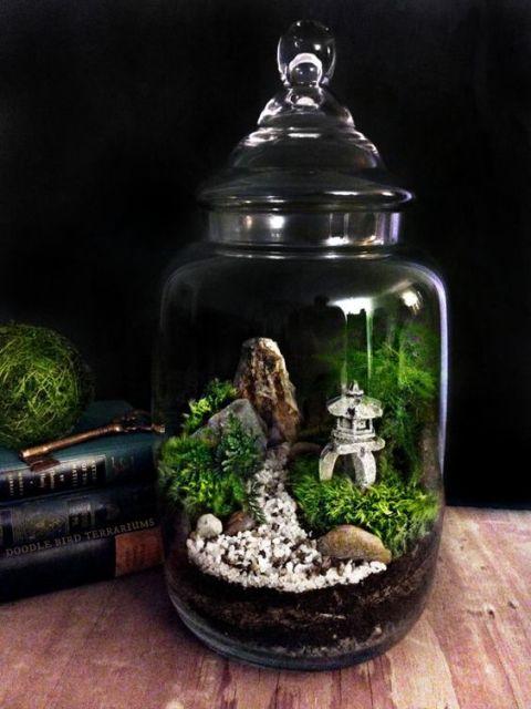 jardim em vaso de vidro
