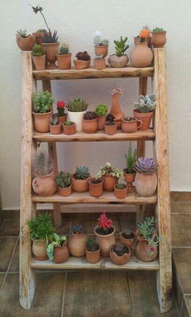Jardim r stico como criar um e 30 modelos incr veis for Donde venden cactus