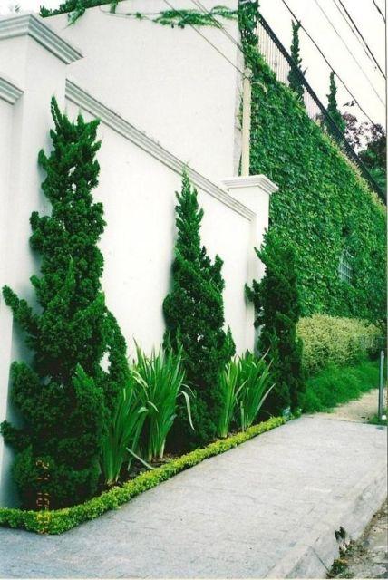 casa com muro