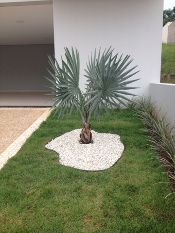 decoração jardim pequeno e simples