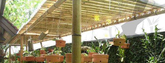 pergolado de bambucom plantas