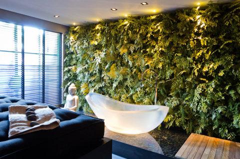 spa em casa interno indiano