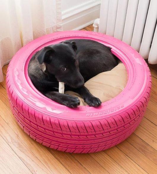 cama cachorro